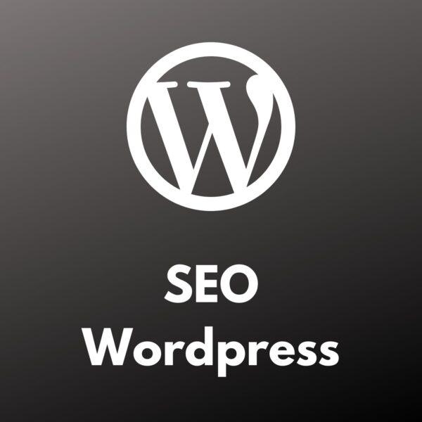 Jasa SEO Wordpress UMKM Bulanan